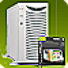 Mietlizenz (monatl. Gebühr) - inkl. Webspace, 1 Domain